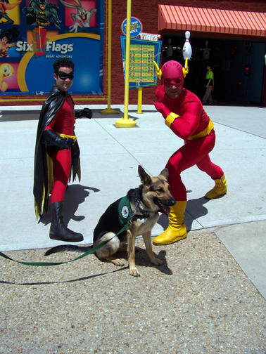 german shepherd Oprah at six flags visiting the flash and robin